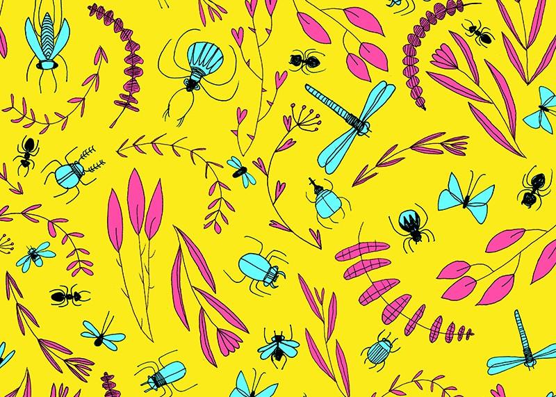 insetti rametti