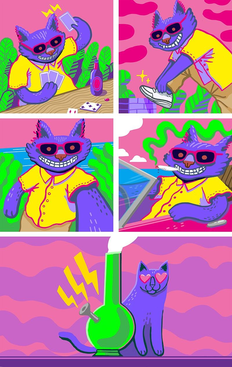 gatto club paradiso